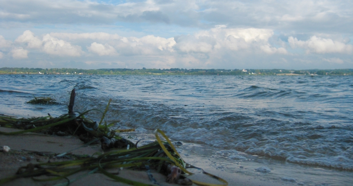 Wellen schwappen ans Ufer des Sandstrandes ganz in der Nähe der Ferienwohnung Fiedler.
