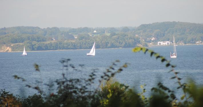 Bewundern Sie die Segelboote, die auf der Ostsee segeln, auch von der Loggia der Ferienwohnung Fiedler aus.