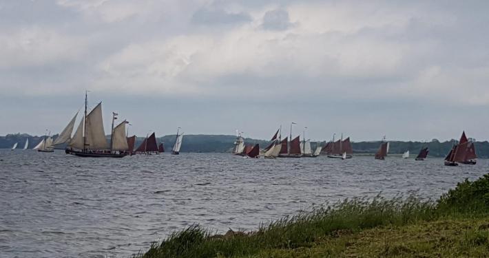 Hier sehen Sie viele alte Segelschiffe, die während der jährlichen historischen Segel-Regatta an der Ferienwohnung Fiedler vorbeisegeln.