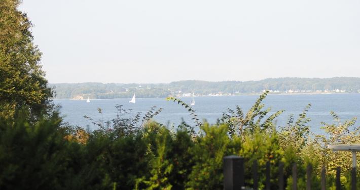 Segelboote segeln durch die Innenförde der Ostsee, direkt vor der Ferienwohnung Fiedler.