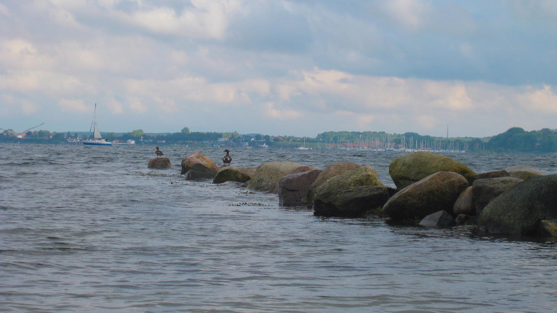 Steine als Wellenbrecher auf dem zwei Vögel sitzen.